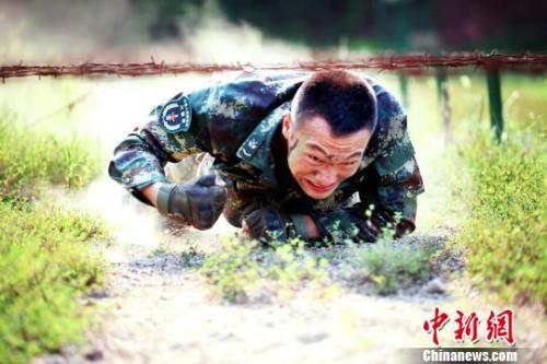 """安徽黄山:烈日下的""""猎人""""训练场"""