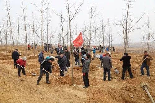 ▲人们在山东日照植树造林