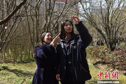 江苏一女孩被纽约大学阿布扎比分校录取 老师赞其会思考