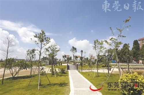 新乡村新气象|洪梅金鳌沙村:创建美丽宜居村,环境效益双丰收
