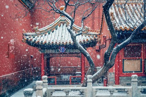 亚洲城ca88网上注册 - 49项高科技项目有望亮相冬奥会