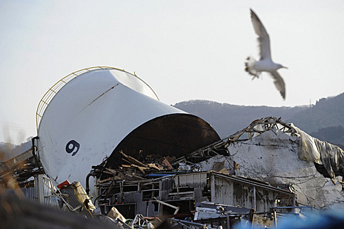 """东日本大地震""""海啸传承馆""""将开"""