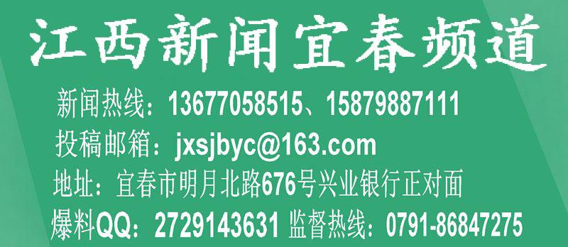 """袁州区慈化镇:用好""""四针法""""织牢森林防火安全线"""