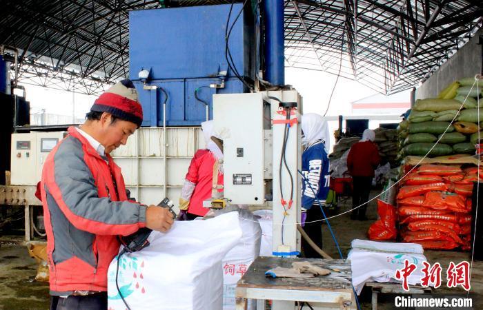 青海牧草生产耕种收综合机械化率达到90%以上