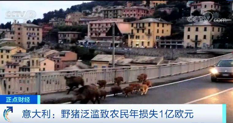 """游戏地带客户端下载 - 郑州出台改进城市管理与改善人居环境实施意见 全力打造""""品质之城"""""""
