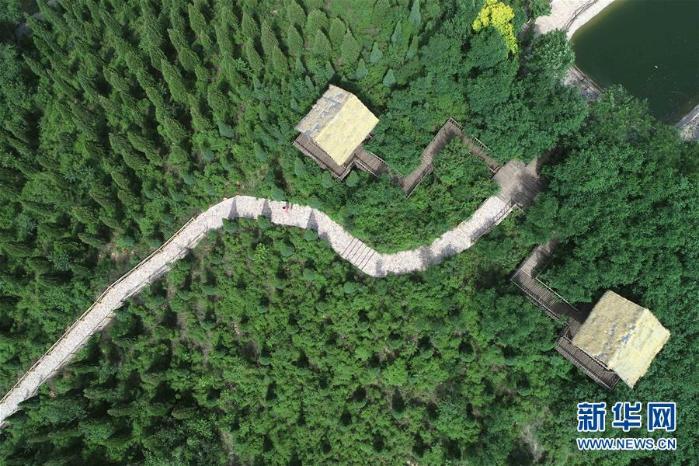 这是5月31日拍摄的河北省沙河市红石沟生态农场一景(无人机拍摄)