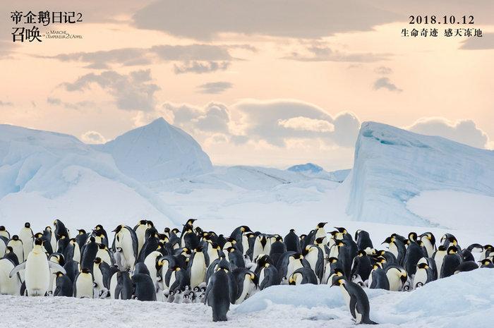 《帝企鵝日記2》發企鵝全家福海報