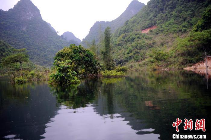 竹子处是地下水反冒的泉眼。 蒋雪林 摄