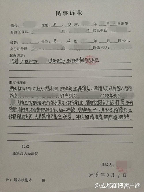 父亲好吃懒做还家暴 12岁女孩替母写诉状:离婚