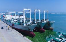 行走海岸线 从木壳船到远洋巨轮,沙窝岛背后的威海远洋渔业图谱