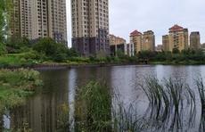 行走海岸线|感受威海精致的城市建设,口袋公园就在市民家门口