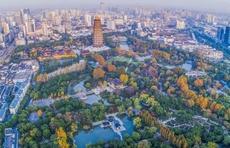 壮丽70年,从旅游业发展看枣庄70年巨变