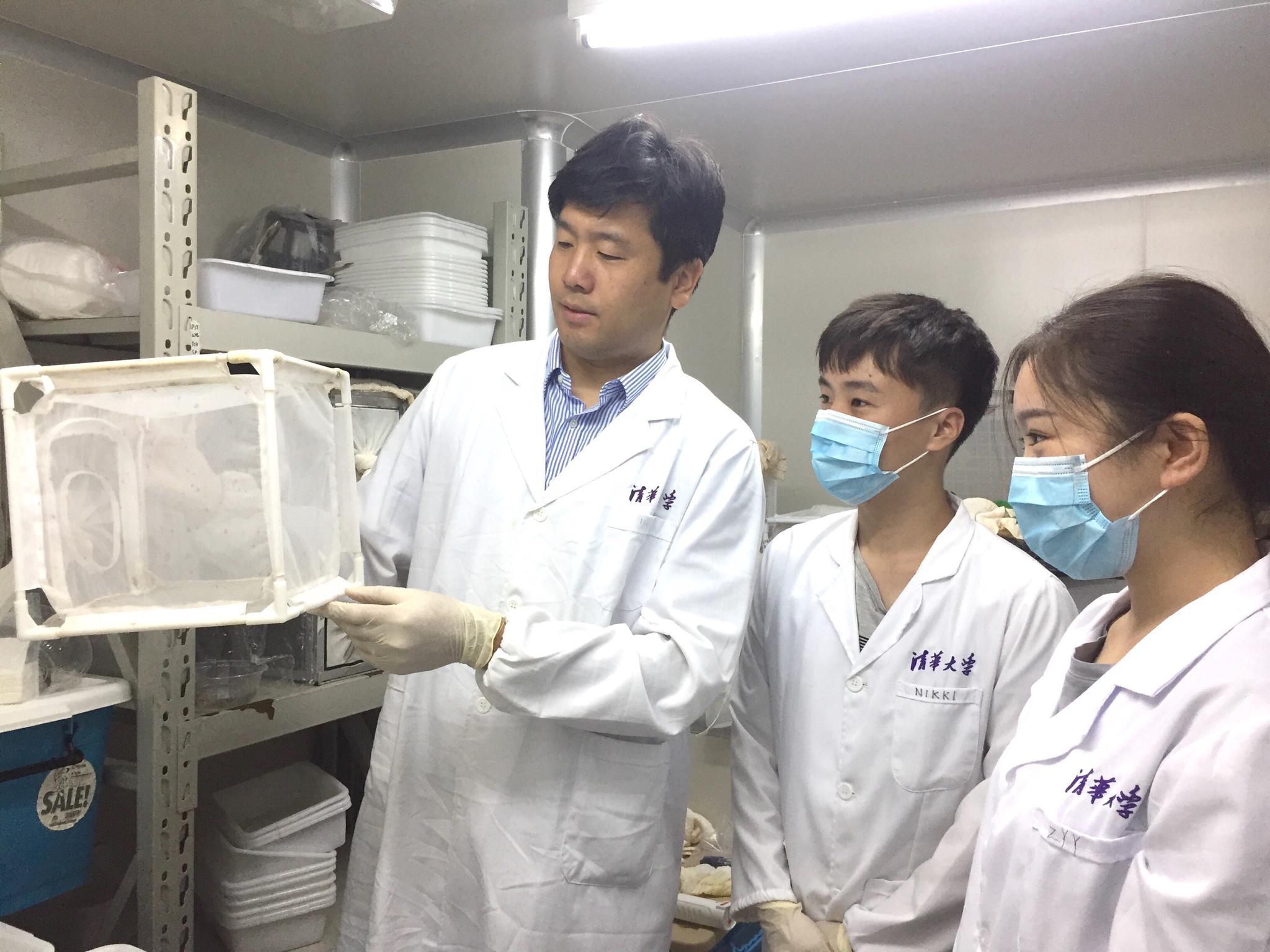 中国科学家提出登革热阻断新策略