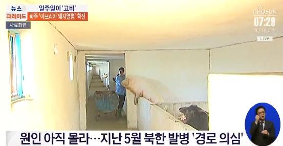 韩媒宣布的晨陈养猪场材料图