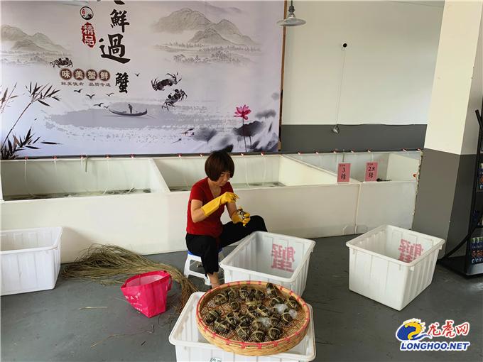 【乡村振兴】产业多样化创新不止步,南京高淳砖墙镇开启农村电商发展新模式