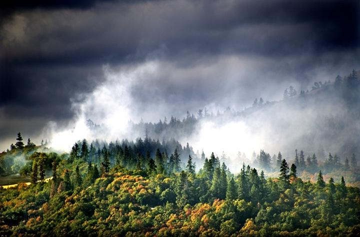 九月秋高,森林草原防火要上心了!