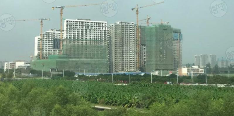 南沙江景宅地超52亿起拍!拿地房企或得亭角村旧改入场券?
