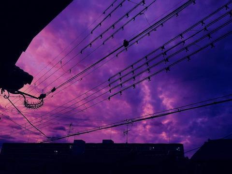 网友分享的紫色天空图片(Twitter)