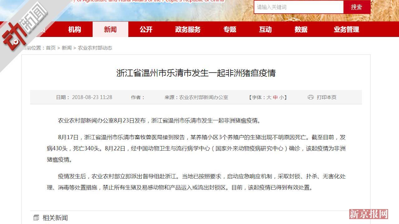 一月内全国第4起!温州发生猪瘟疫情死亡340头 3D科普如何防控