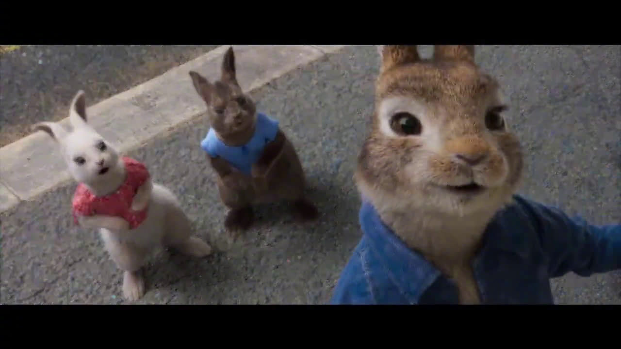 《比得兔2》首支预告片释出!2020年4月3日北美上映 -