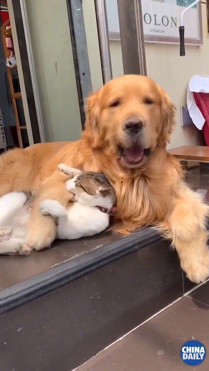 这是什么神仙友情,简直太暖了!!!