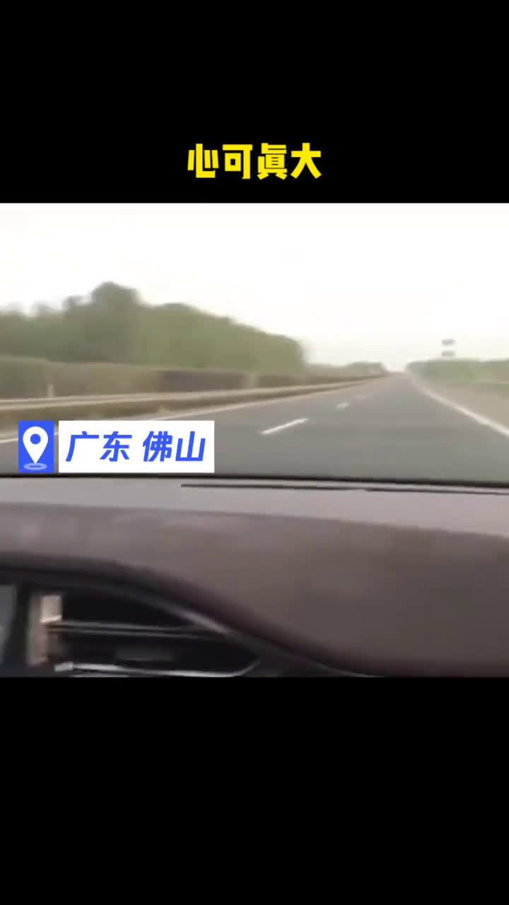 回乡见闻佛山一特斯拉车主在高速上开启自动驾驶,自己躺后座睡