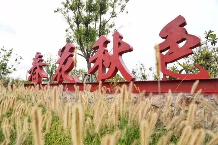 """太阳城集团申博娱乐,大医疗健康领域""""独角兽"""",为患者守护医保""""救命钱"""""""