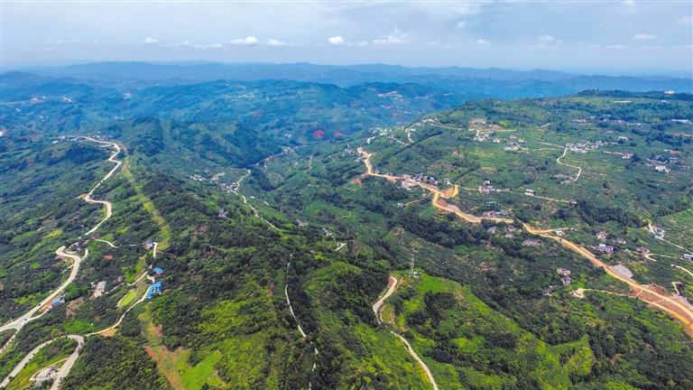 龙泉山城市森林公园完成增绿增景2.2万亩图片