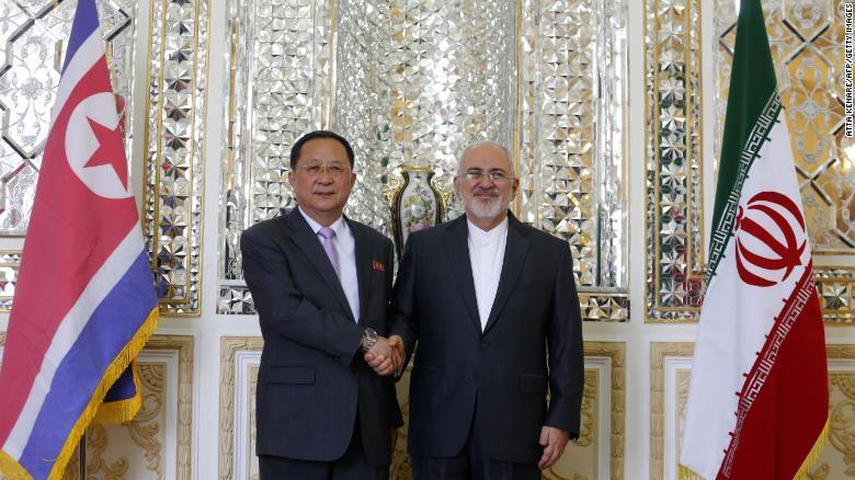 美国对伊朗重启制裁之际 朝鲜外相访问伊朗(图)
