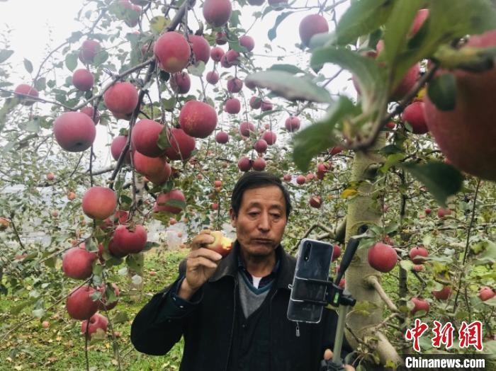 http://www.shangoudaohang.com/chuangtou/241893.html