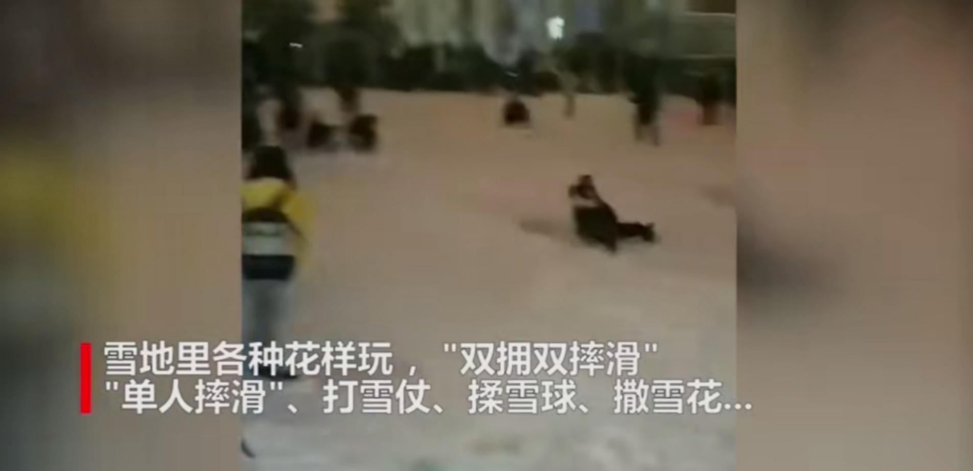 博狗登不上_即行Car2Go将退出中国 传其或并入蔚星科技