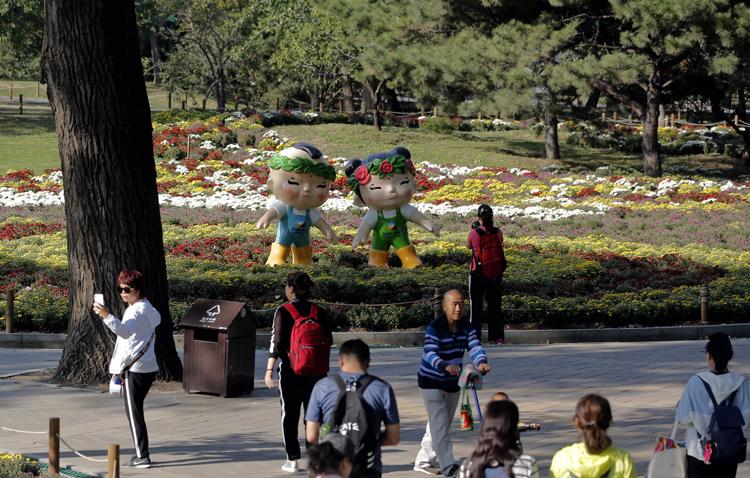 北京植物园40万株鲜花迎国庆 市花展十一开幕