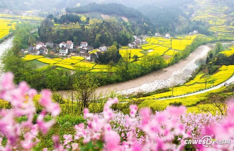 2018中国最美油菜花海汉中旅游文化节在勉县启动