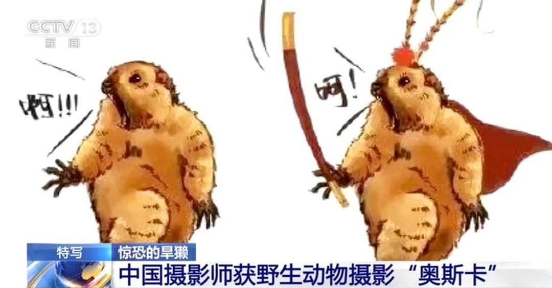 仲博彩票的返点 - 《现代汉语词典》APP收费的是与非