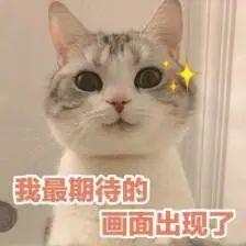 博猫平台:华博猫平台中大版剑河年底完工图片