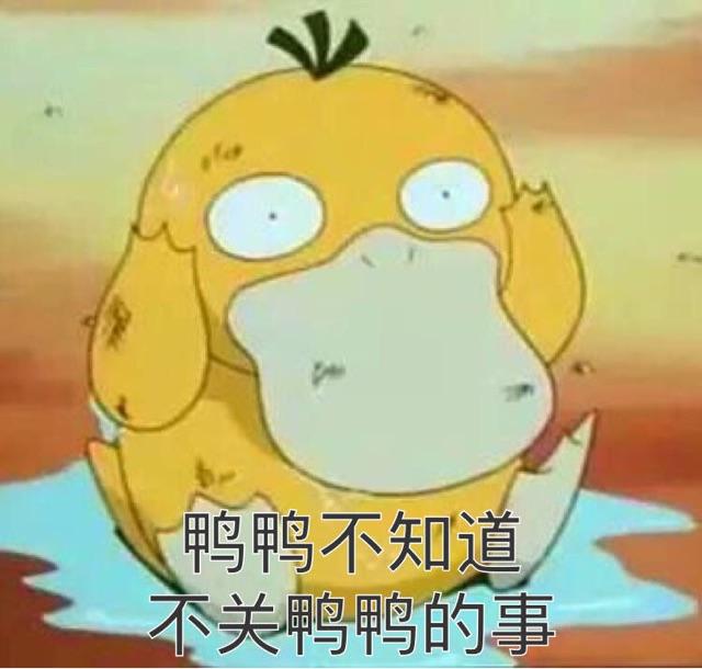"""学养鸭子还免作业?校长把教室""""搬到""""了池塘……"""