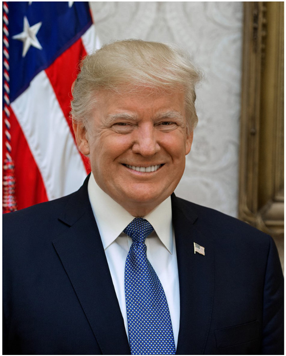 特朗普总统的的官方肖像照。