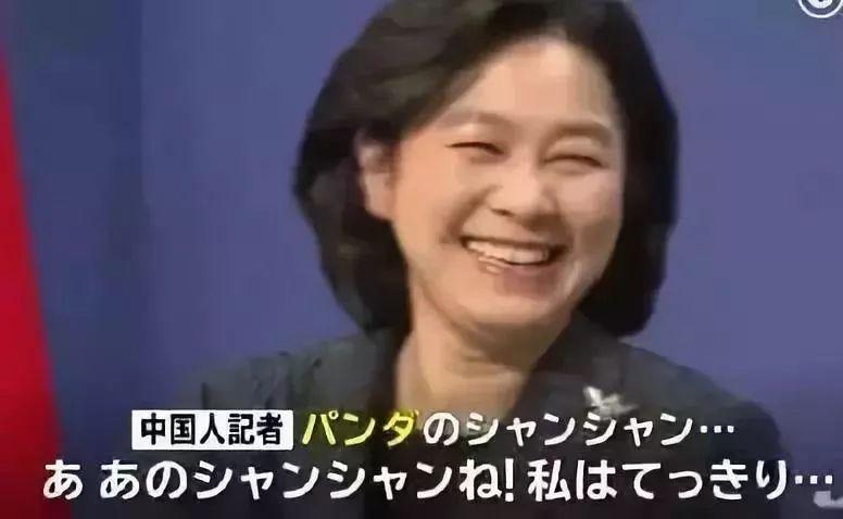 为♀了大熊猫,矜持的日本人开始撕�破脸皮了