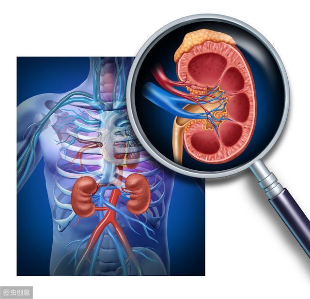 痛风祸害的不仅是关节,肾脏也常会遭殃!若有泡沫尿,你得留心了