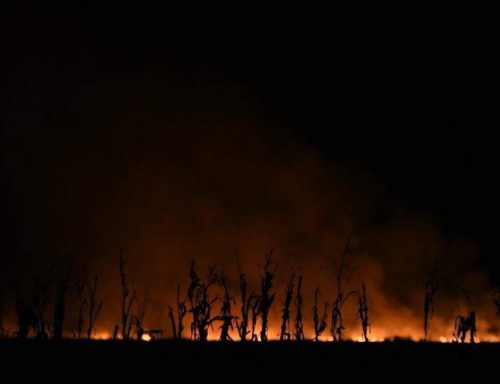 辽宁海乡的郊区,村平易近燃烧秸秆激发火警。新京报记者 王颖 摄
