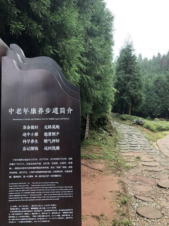 """不再考核GDP后 这个生态文明建设示范县如何打造绿色发展""""四川样本"""""""