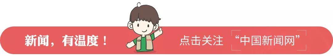 """""""江淮十大女杰""""金玉莲再被通报:违规使用奥迪轿车"""