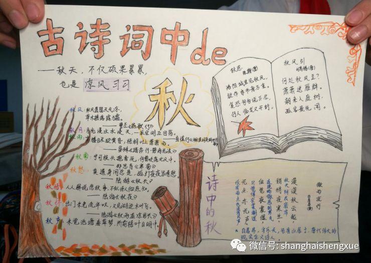 展播| 上海市民办新华初级中学:做人求真 学问求实图片