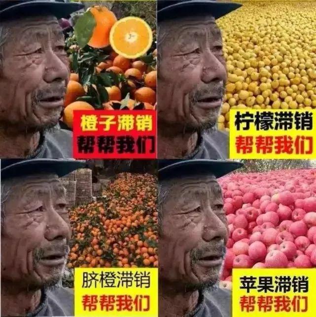 """万家乐188_""""食安山东""""食品生产加工示范基地现场推进会议在山东济南平阴县召开"""