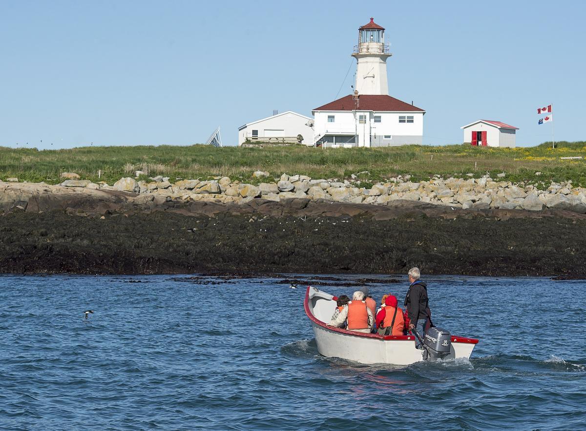 玛基亚斯海豹岛上挂着加拿大国旗 图源:CBC