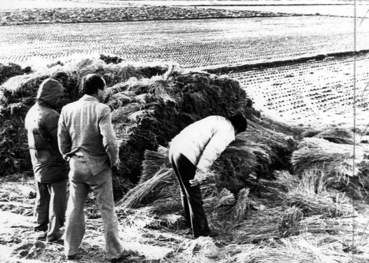 1987年,韩国police方邪在华乡黄溪里的案收明场检察。 视觉China 图