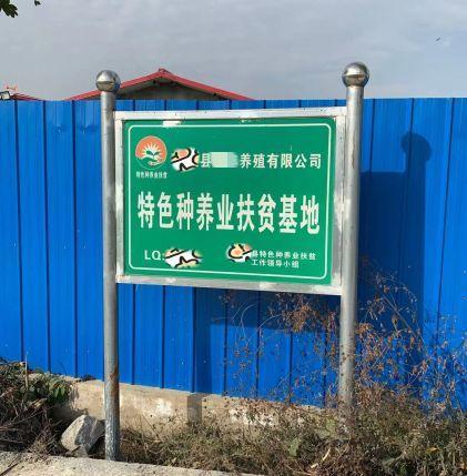水晶城官方网站·亚洲龙:厨子不看菜谱看兵法,5米长的菜刀怕不怕!