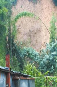 蒲江西来镇铜鼓村受滑坡影响的房屋。华西都市报 图