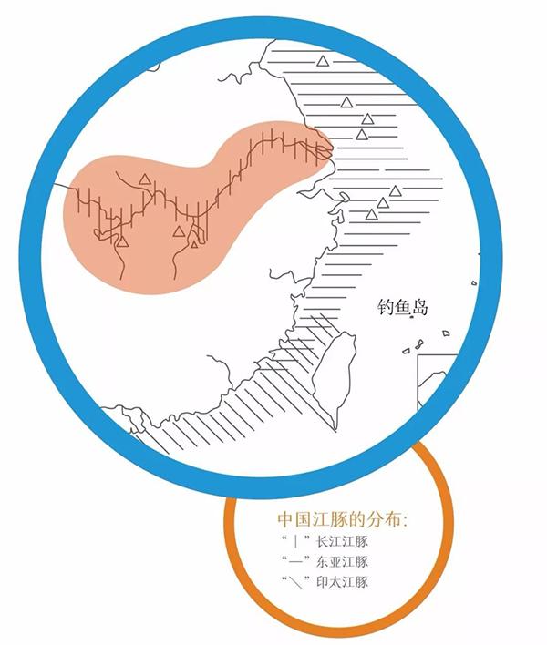 中国江豚的分布 南京长江江豚保护微信公众号 图