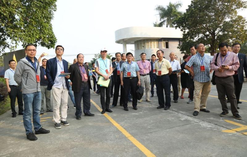 开平市政协港澳委员回乡视察 助力开平各项事业发展